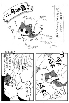 mini_coo_01.jpg